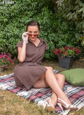 Classy lady Sophia Smith opens legs in vintage gartered FF stockings at a picnic